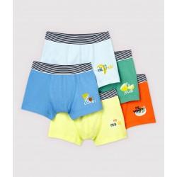 Boys' Fruit Pattern Boxer Shorts - 5-Pack